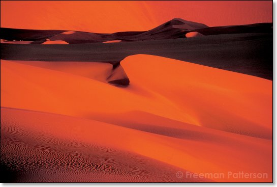 Sunset Dunes - By Freeman Patterson