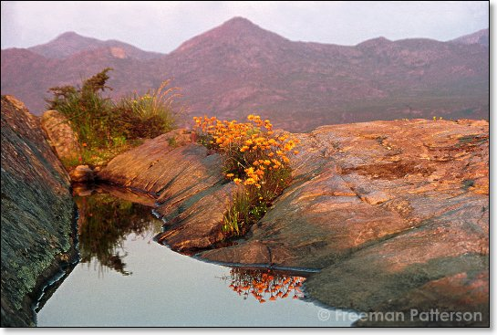 Mountain Pool, Namaqualand - By Freeman Patterson